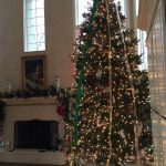 interior_holiday_decor-003