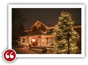 Chicago Light Up Your Holidays Reviews Testimonials - Sylvia S. | Libertyville, Illinois