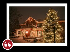Chicago Light Up Your Holidays Reviews Testimonials - Sylvia S. | Libertyville, Illinois